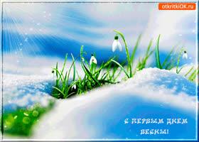 Открытка первый день зеленой весны
