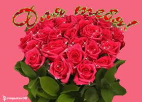 Картинка плейкаст красивые розы