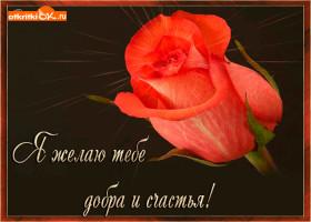 Открытка пожелание добра и счастья