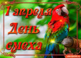 Картинка попугай кеша поздравляет с 1 апреля!