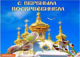 Открытка поздравляю всей душой - с вербным воскресеньем