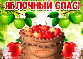 Картинка поздравление открытка яблочный спас