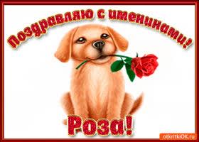 Открытка поздравляю с днём имени роза