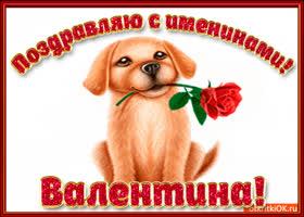 Открытка поздравляю с днём имени валентина