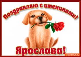 Картинка поздравляю с днём имени ярослава