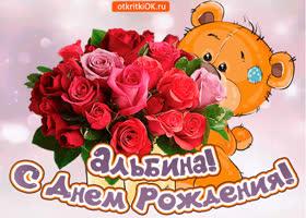 Картинка поздравляю с днём рождения альбина