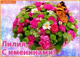 Открытка поздравляю с именинами лилия