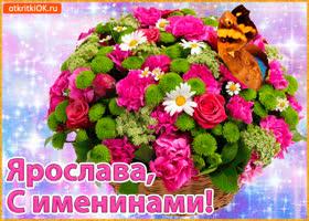 Открытка поздравляю с именинами ярослава