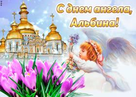 Открытка поздравляю с прекрасным праздником, альбина