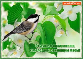 Картинка праздник весны и труда