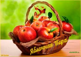 Картинка праздник яблочный спас