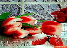 Картинка прекрасная весна расцветает