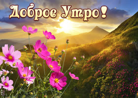 Картинка прекрасная картинка доброе утро с пейзажем