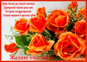 Картинка прекрасней чайной розы нет