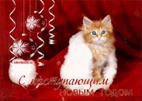 Картинка прикольная открытка с новым годом