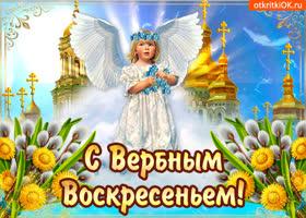 Картинка приятного вербного воскресенья