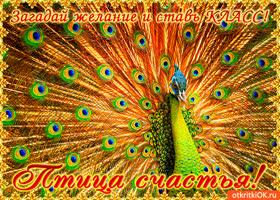 Открытка птица счастье сегодня тебя