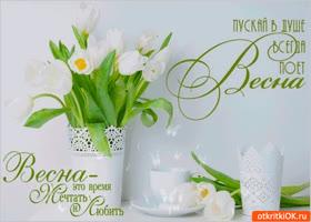 Картинка пускай в душе весна поёт
