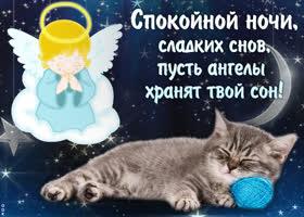 Картинка пусть ангелы хранят твой сон