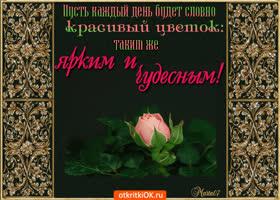 Открытка пусть каждый день будет словно красивый цветок