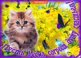 Картинка пусть весна согреет душу счастьем