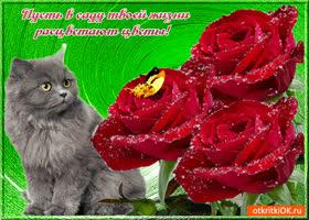Картинка пусть в твоей жизни расцветают цветы