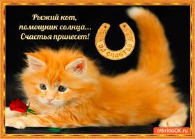 Открытка рыжий кот сегодня счастье принесёт