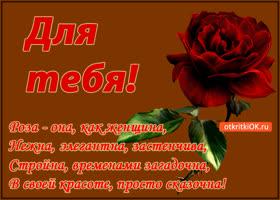 Картинка роза для тебя!