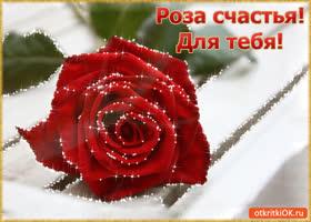 Открытка роза счастья! для тебя!