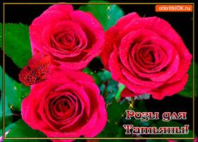 Картинка розы для любимой татьяны