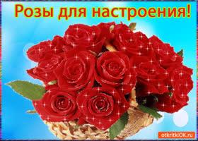 Открытка розы для настроения!