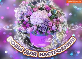 Картинка розы тебе для настроения