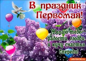 Открытка с 1 мая - желаю счастья впереди
