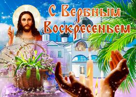 Картинка с чудесным праздником вербного воскресенья поздравляю