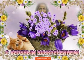 Открытка с чудесным вербным воскресеньем