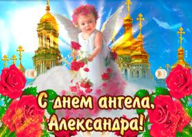 Картинка с днём ангела александра — красивые розы