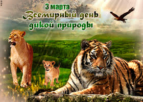 Картинка с днем дикой природы