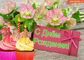 Открытка с днём рождения! поздравляю!