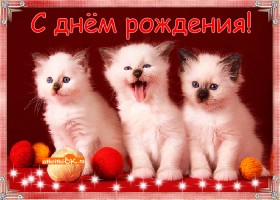 Картинка с днём рождения! желаю счастья!
