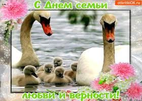 Картинка с днём семьи, любви и верности - любите и будьте любимы