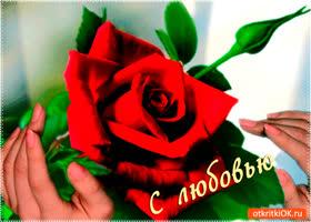 Открытка с любовью цветочек