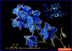 Открытка с нежностью для тебя цветок