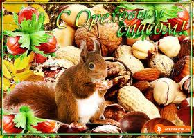Картинка c ореховым спасом