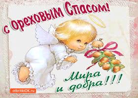 Картинка с ореховым спасом - мира и добра!