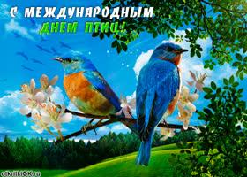 Картинка с прекрасным днем птиц тебя поздравляю