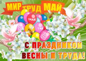 Открытка с прекрасным праздником весны и труда