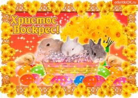 Открытка с прекрасным светлым праздником пасхи