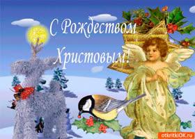 Открытка с рождеством христовым вас дорогие