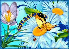 Открытка с цветами и словами благодарности