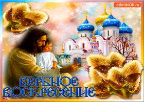 Открытка с вербным воскресеньем - открытка для друзей